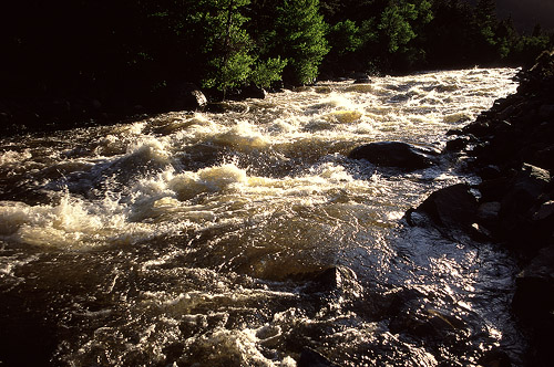 Roiling currents of the Poudre River in evening sunlight