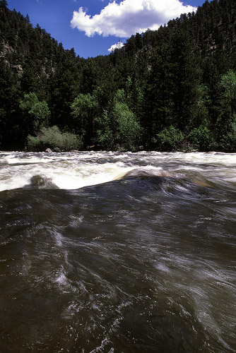 Rapids on the Poudre River