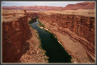 Marble Canyon from Navajo Bridge upstream from Jackass Canyon