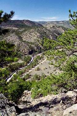 Poudre Canyon, west of Mt McConnel