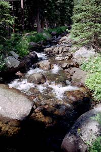 North Fork Little Laramie River, Medicine Bow National Forest