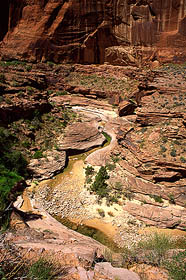 Bridge Creek above Lake Powell and Rainbow Bridge
